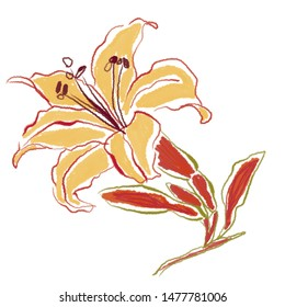 FLOWER DIGITAL ILLUSTRATION ARTSY STYLE LILY