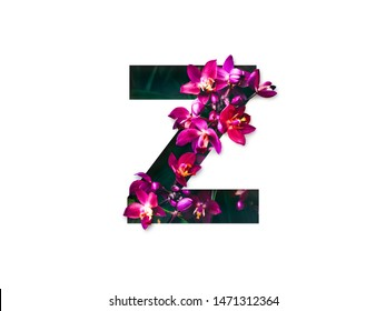 Flower font letter Z , Create with real alive flowers and Precious paper cut shape of alphabet. Collection of brilliant bloom flora font for your unique text, typography with many concept ideas