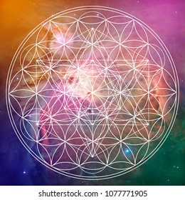 Flower of life and metatron sacred geometry on space background