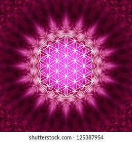 Flower of Life - Pink / Flower of Life / The Flower of life is an ancient symbol of Sacred Geometry and represents the fundamental order of creation.