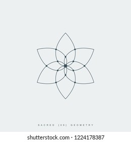 flower of life. sacred geometry. lotus flower. mandala ornament. esoteric or spiritual symbol. isolated on white background