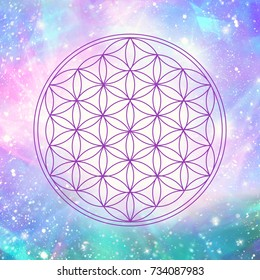 flower of life symbol centered in a colorful, sparkling universe background full of stars and fractals