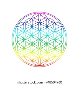 Flower of life  - symbol for spiritual symbol for harmony and inner peace - colors of 7 chakras