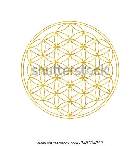 Flower Life Symbol Spiritual Symbol Harmony Stock Illustration