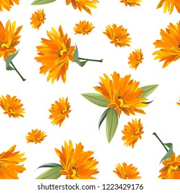 flower love orange beautiful  article abstract backraund