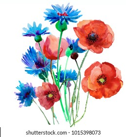 Flower meadow with poppies. Postcard painted red poppy with leaves lively watercolor paint for your design
