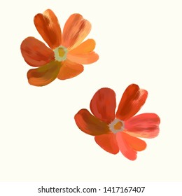 Flower on white background.   Isolated. Tulips. Stylization: watercolor.