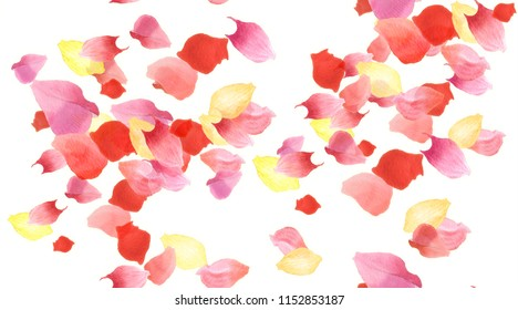 Flower petals flying seamless pattern. Watercolor red and yellow petals wind