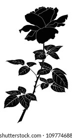 Flower rose, petals and leaves, black silhouette on white background