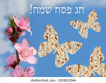 flowering peach and butterflies made from matzo on the background of bright blue sky with the inscription in Hebrew - Happy Passover