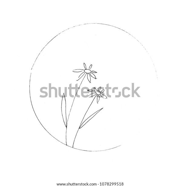 Flowers Black Pen Drawing Abstract Art Stock Illustration