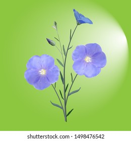 The flowers and buds of blue flax from the stem and leaves on green background illuminated, single, icon