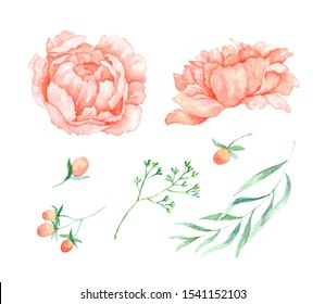 Flowers clip art for wedding invitation or greeting cards