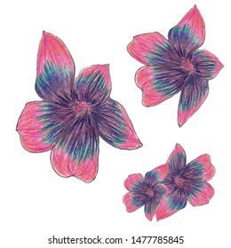 flowers hand drawing in artsy style blue