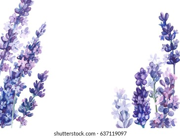 Flowers lavender, watercolor, with space for text
