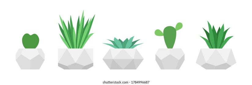 Flowers in trendy geometric pots. Set of succulent plants. Home gardening collection. Raster version