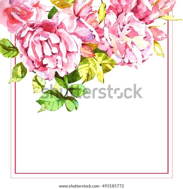 Flowers watercolor illustration.