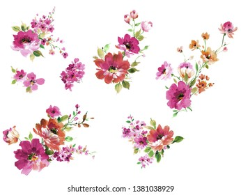 Flowers watercolor illustration. Manual composition.Big Set watercolor elements.collection garden and wild, forest herb, flowers, branches.