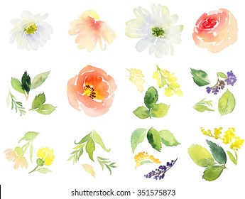 Flowers watercolor. Set for postcards.