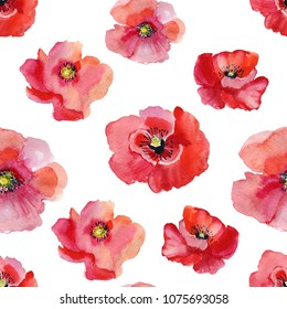 Flowers. Wildflower poppy flower pattern in a watercolor style isolated. Full name of the plant: poppy, papaver, opium. Aquarelle wild flower for background, texture, wrapper pattern, frame or border.