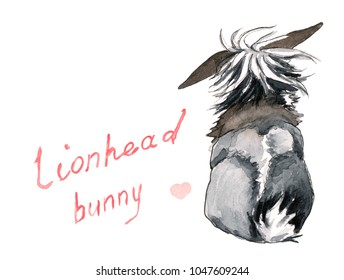 Fluffy grey, brown, black, and white lion-head rabbit, back view, with hand drawn title and pink heart.