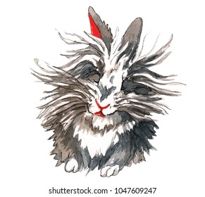 Fluffy lion-head rabbit with grey, brown, black, and white fir is sitting with eyes closed.