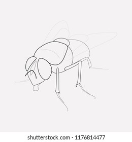Fly icon line element.  illustration of fly icon line isolated on clean background for your web mobile app logo design.
