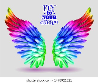 fly to your dream concept angel colourfull feathers