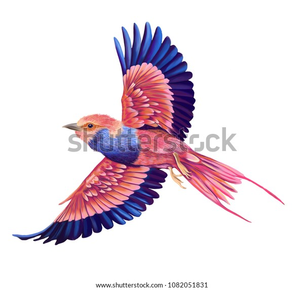 Flying Bird Illustration Pink Blue Colourful Stock Illustration 1082051831