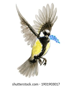 Flying bird watercolor illustration solated on white