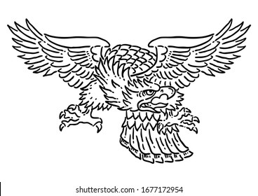 Flying eagle isolated on white illustration.