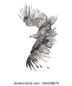 Flying Falcon drawn in ink.