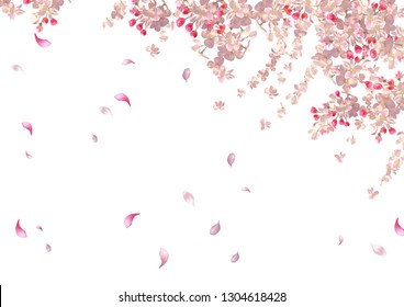 Flying petals on spring background. Flowers and petals in the wind. Hanging flowers
