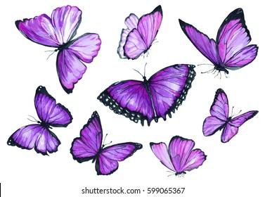 Flying purple butterfly. Watercolor illustration