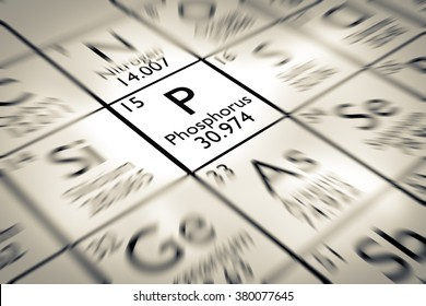Focus on Phosphorus chemical Element from the Mendeleev periodic table