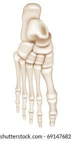 Foot Bones, Bitmap copy