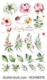 Foral collection with flower,peonies,leaves,branches,lupin,air plant,field bindweed,strawberry and more.Colorful collection with 24 watercolor elements.Set of floral elements.Lovely Bouquet collection