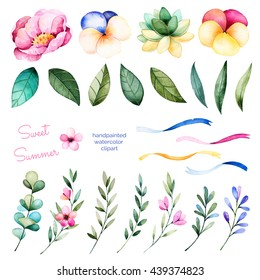 Foral collection with flowers,peony,leaves,branches,succulent plant,pansy flowers,ribbons and more.Colorful floral collection with 24 watercolor elements.Set of floral elements.Sweet Summer collection