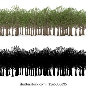 A forest with alpha mask isolated on white background.
