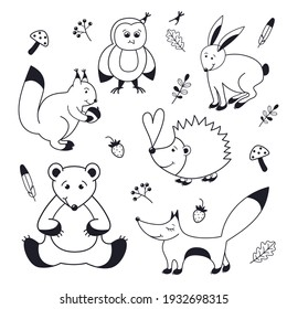 Forest animals outline drawing.  Abstract line illustration on white background
