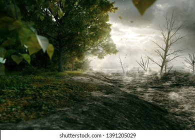 Forest is bordered by desert (3D Rendering)