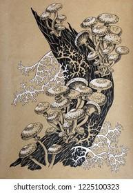 Forest Mushrooms. Armillaria mellea Honey Fungus, hand drawn line-art artistic background.  Sketch organic food drawing template.  Mushroom edible mushrooming poster.   Vintage paper.