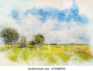 Forest near field. Aquarelle water paint effect
