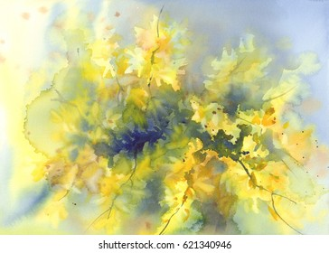 forsythia yellow flowers watercolor background