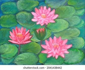Quatre belles nénuphars rouges et roses qui fleurissent à la surface des calottes dans un étang
