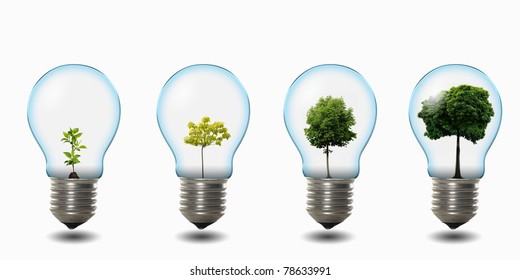 four light bulbs with nature simbols inside