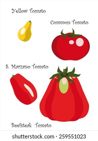 four qualities of tomatoes, San Marzano, beef heart, yellow and common tomato isolated on white background