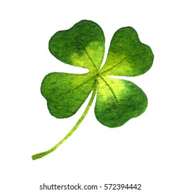 Four-leaf clover. Watercolor illustration on white