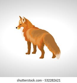 Red Fox Face Stock Illustrations Images Vectors Shutterstock