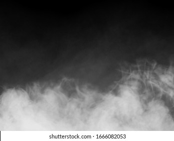 Fox or Smoke on Black Background ,Free Copy Space.
